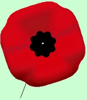 Remembrance Day poppy - Canada