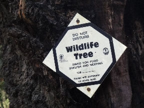 Wildlife Tree sign