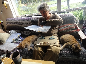Two cats bookending Mead as he knits chainmail