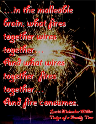 ...in the malleable brain, what fires together wires together...And what wires together fires together...And fire consumes. #Addiction #Ambush #TwigsOfAFamilyTree